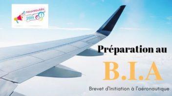 Préparation au Brevet d'Initiation à l'Aéronautique