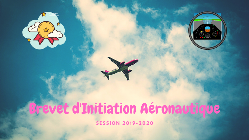 Résultats option BIA 2019-2020